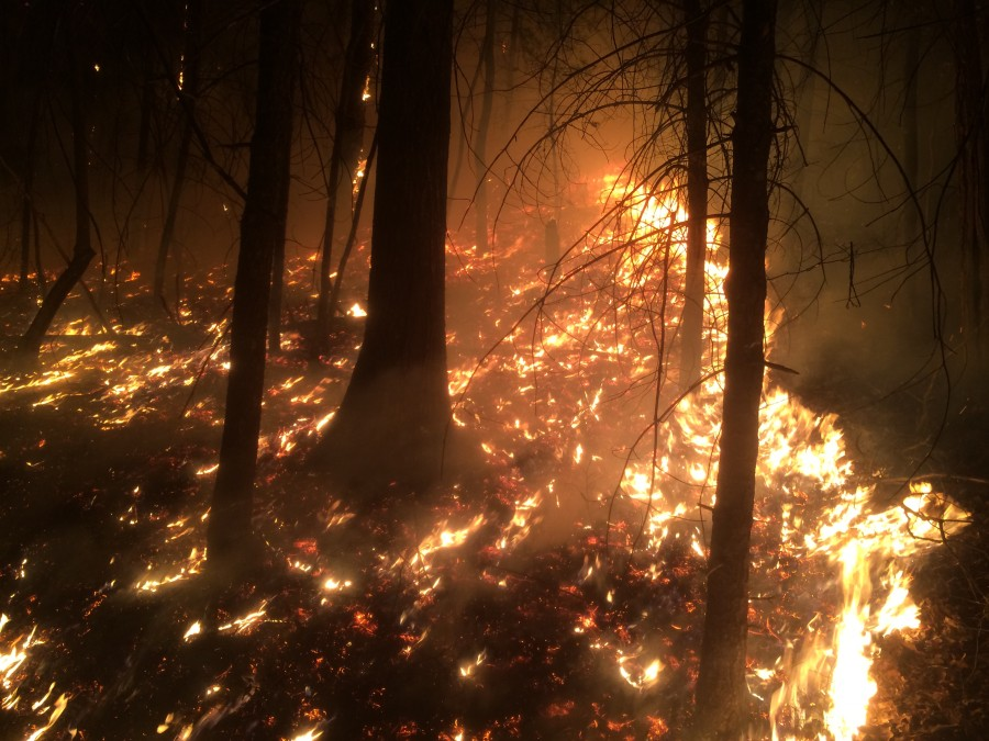 Crews working 282-acre wildfire in Chattahoochee Nation ...
